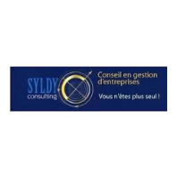 SYLDY Consulting