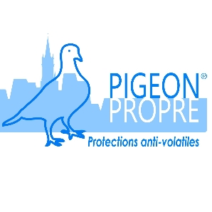 PIGEON PROPRE