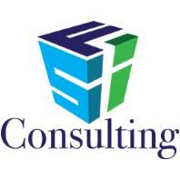 FSI consulting