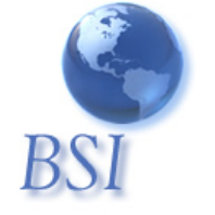 Business Services International