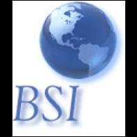 Business Services International